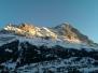 Ferienwohnung in Grindelwald