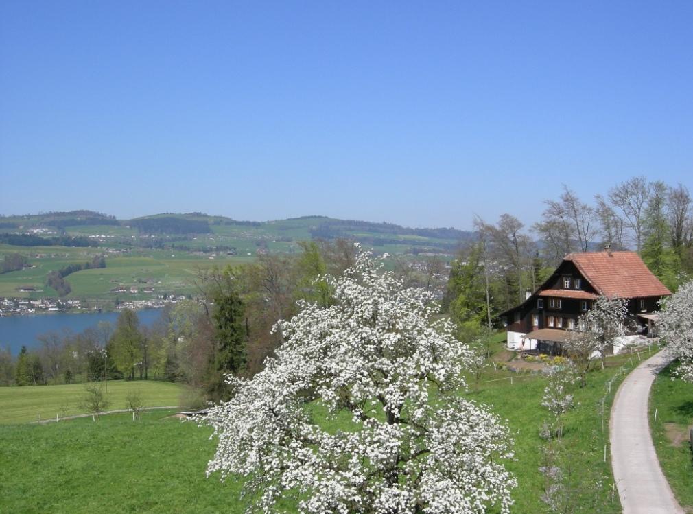 Liegenschaft Oberfeld, Greppen