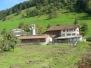 Stallanbau 2007-2008